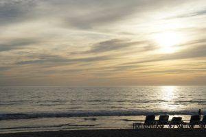 Bahía de Banderas: Un lugar seguro, en un México libre y solidario