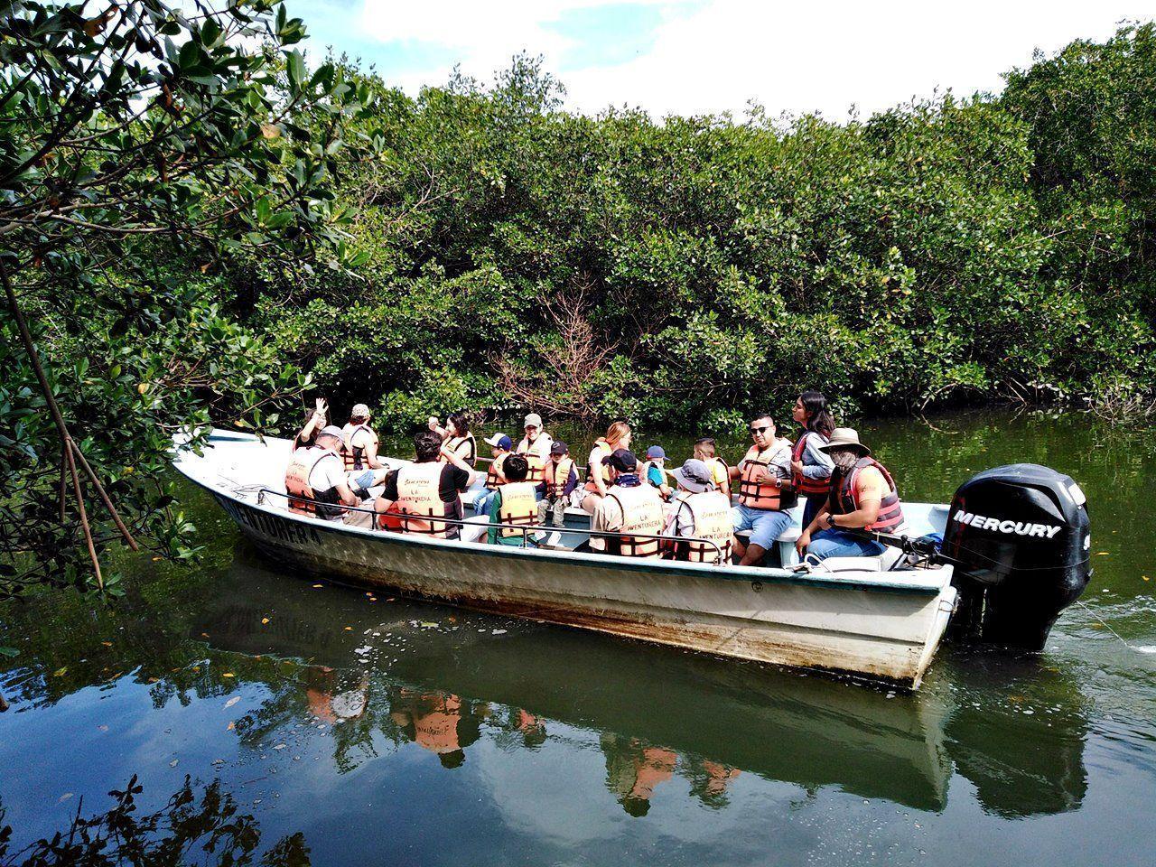 Esteros de Bahía de Banderas: Ecosistemas indispensables