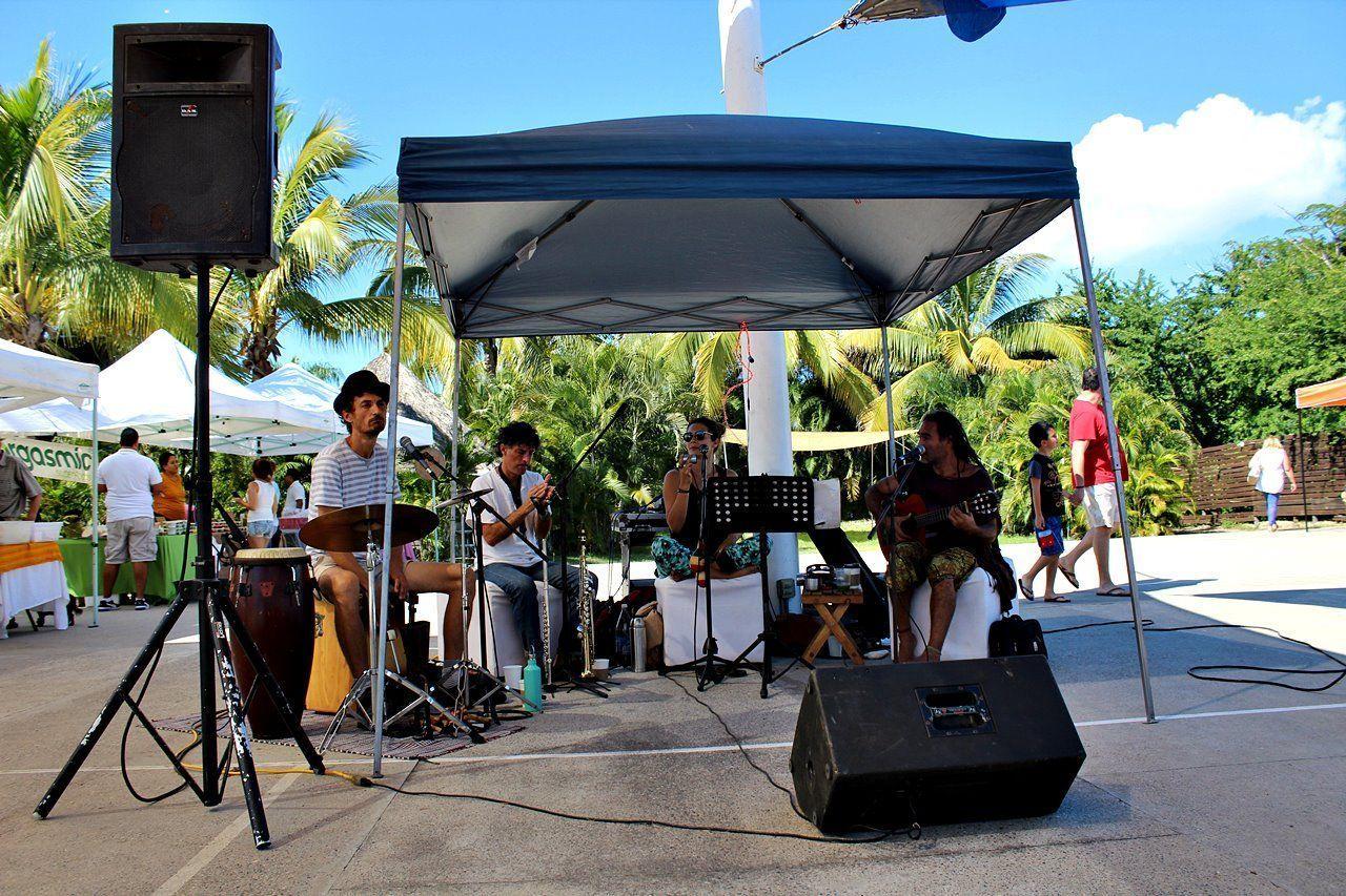 Mercados de temporada, Mercados de Puerto Vallarta, Mercados de Riviera Nayarit, Mercados de Bahía de Banderas