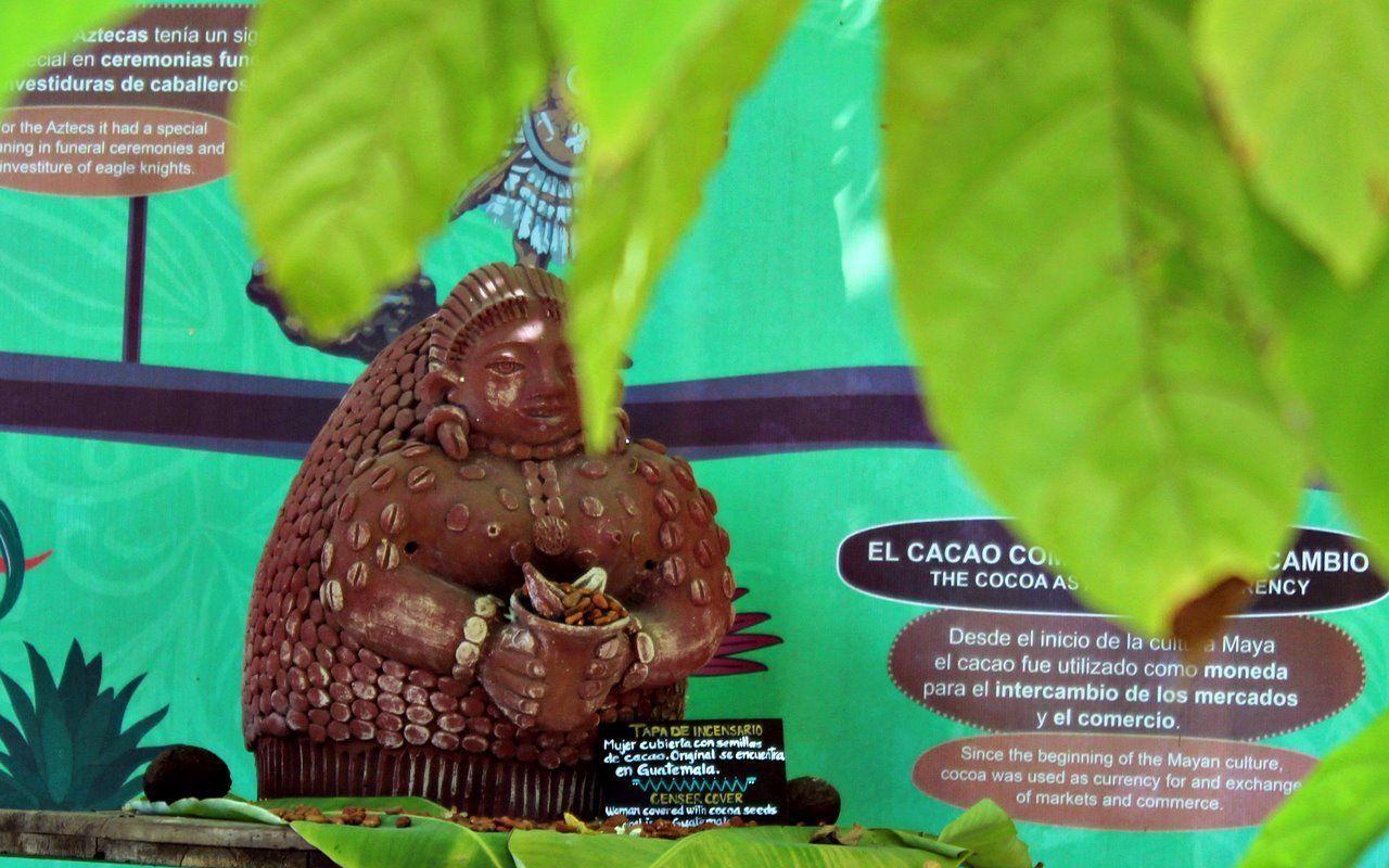Planeta Cacao: el corazón de la tierra en Riviera Nayarit