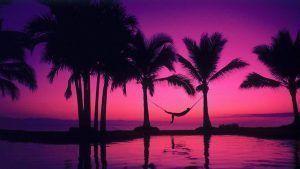 Infografía: Lujo y maravillas naturales de Riviera Nayarit