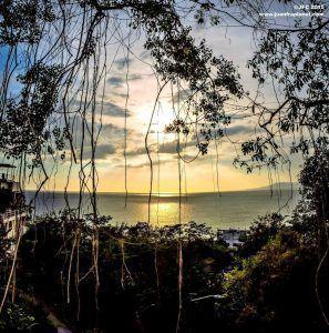 Puerto Vallarta y Riviera Nayarit, detalles imperdibles en el verano