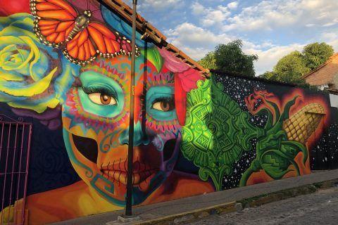 Murales de Puerto Vallarta, arte urbano que le da color y vida a la bahía