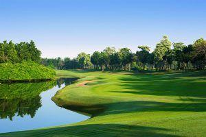 Golf en Riviera Nayarit:  8 campos de campeonato