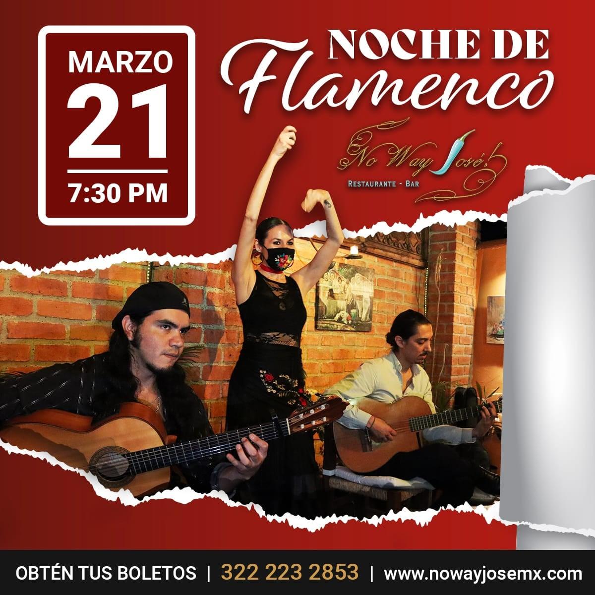 Flamenco en Puerto Vallarta